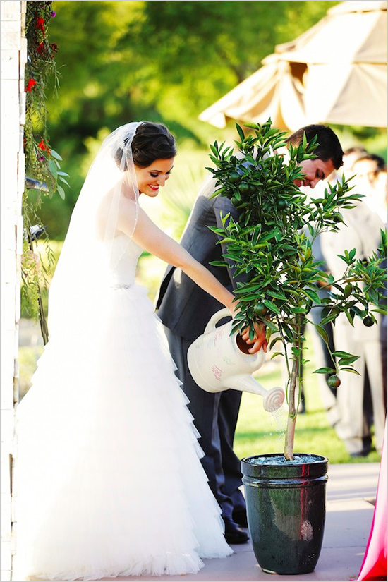 modern vegas wedding tree planting ceremony