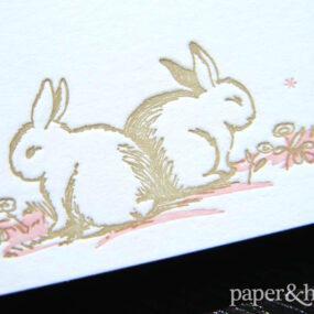 baby girl announcements bunny